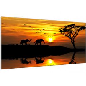 Afryka 115x55