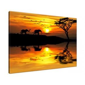 Afryka 70x50