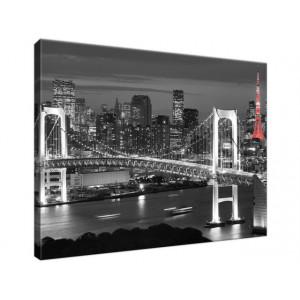 Tokyo most tęczowy 40x30