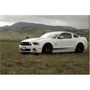 Traktor Belarus 40x30cm - Obraz na ścianę