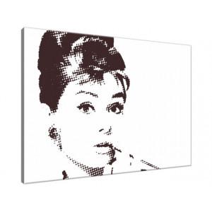 Audrey Hepburn 70x50