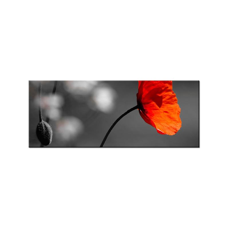 Kamienista droga 120x65cm - Obraz na ścianę