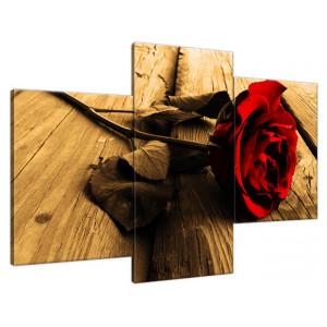 Azalia pomarańczowa 60x90cm - Obraz na ścianę