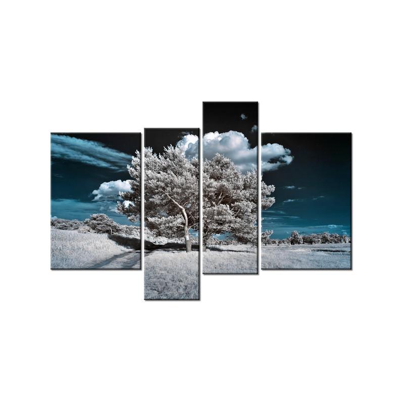 Piękna rozkwitająca róża 90x60cm - Obraz na ścianę